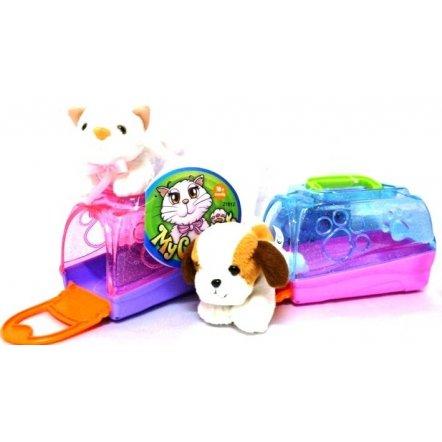 Домашний любимец - кошка или собака - в будке 21011-2