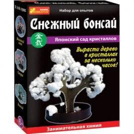 Набор для исследований  Дерево из кристаллов Снежный бонсай 0352