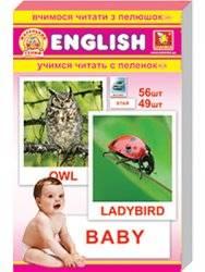 """Карточки Домана """"Маленький гений"""" основной комплект на английском языке"""